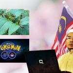 Ketum, Pokemon Go dan kemerdekaan