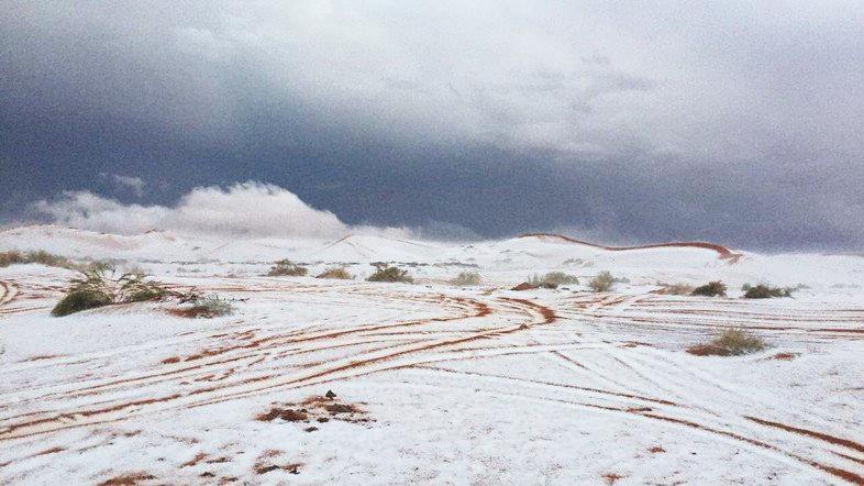 Salji di tengah, barat laut Arab Saudi, Tanah Arab yang kering kontang telah menjadi HIJAU, KIAMAT SUDAH SANGAT HAMPIR !!