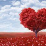 Hari Kekasih: Salah memahami hierarki cinta