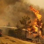 Lebih 70 kebakaran meletus di Turki